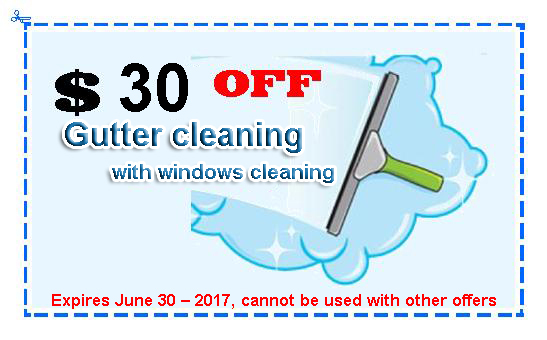 30off coupon gutter cleaning 2017